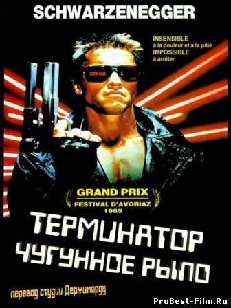 Терминатор 1 - перевод Гоблина